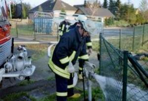 dienst 2001-05 05